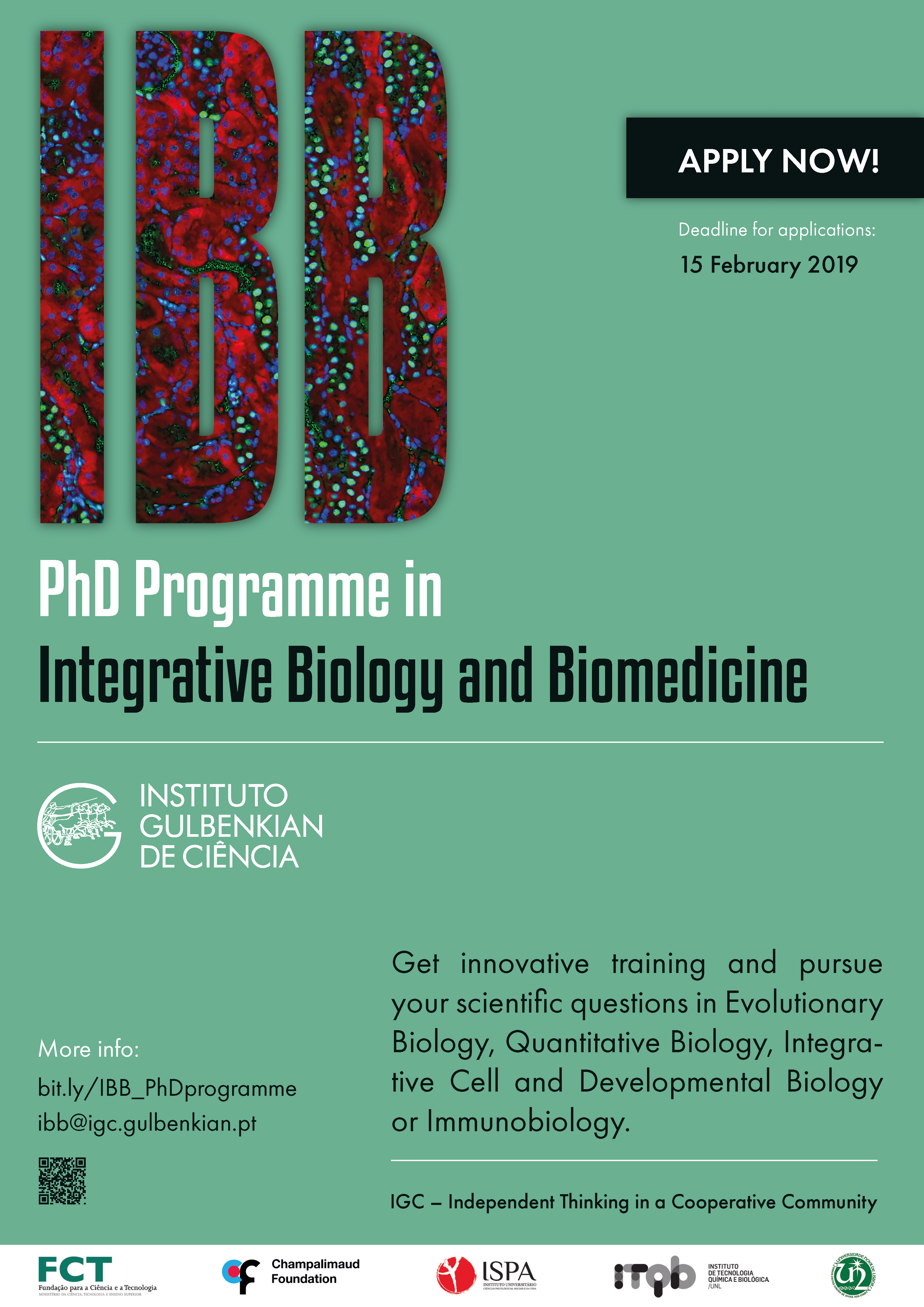 PhD Programme in Integrative Biology and Biomedicine - Instituto Gulbenkian de Ciência, Portugalia