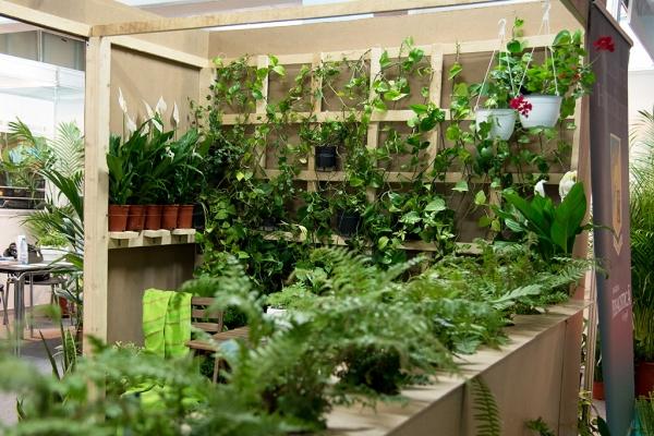 expo-flowers-and-garden-si-romenvirotec-2016-7FCE3D3E7-6E40-C4FB-9C74-4C18BD88B942.jpg