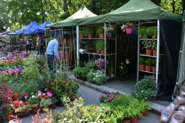 hortus-florshow-2015-150FDD2213-E04E-60BA-3CB3-A853132573B2.jpg