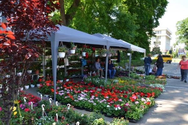 hortus-florshow-2015-6F04FDE8B-9DA2-8EC5-62E0-254C767A09E1.jpg